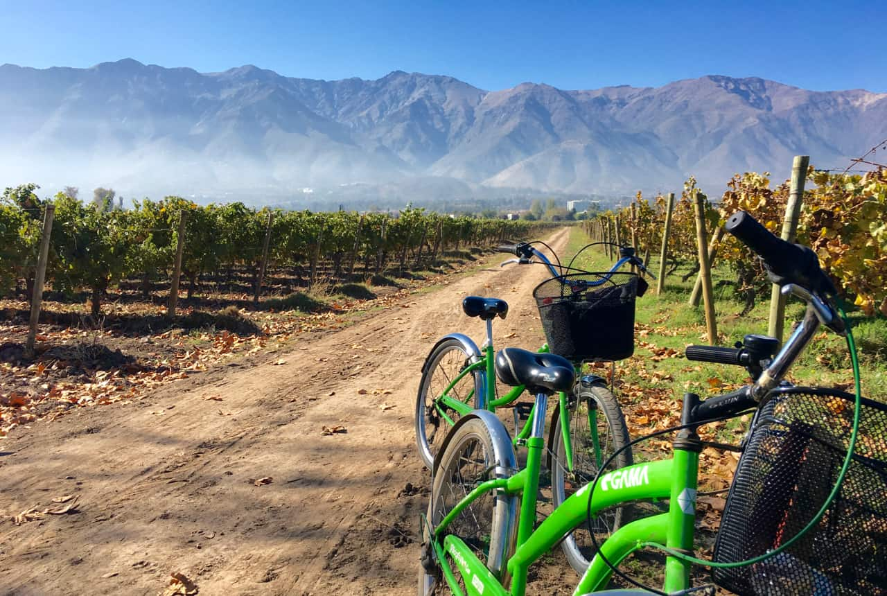 Things to do in Santiago - Bike and wine tour at Cousiño Macul winery in Santiago's Maipo Valley.