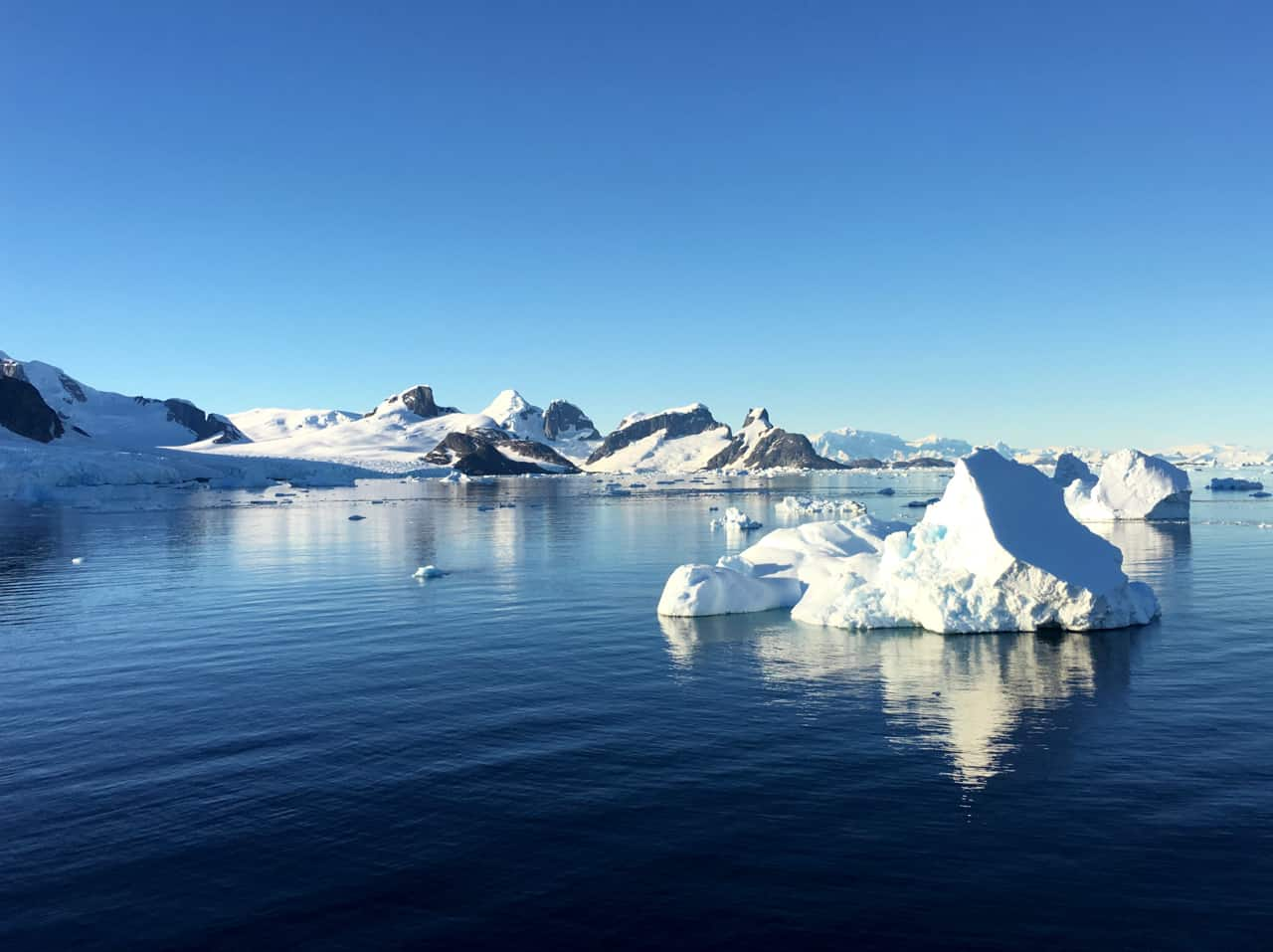 Icebergs float in dark blue water in front of a pristine ice and rock landscape in Antarctica.