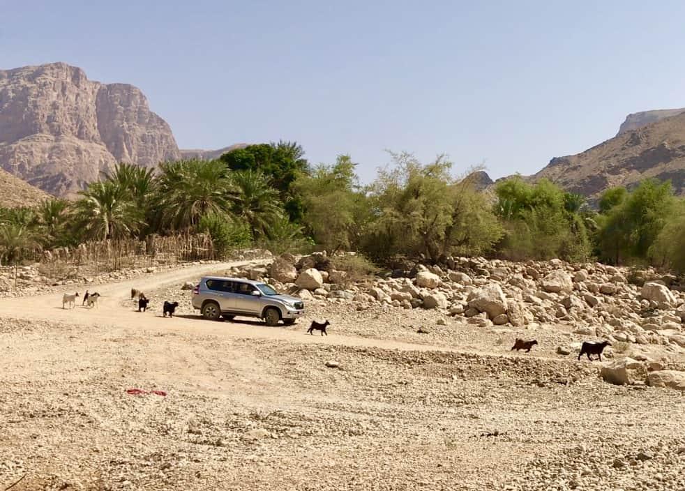 Oman 4WD