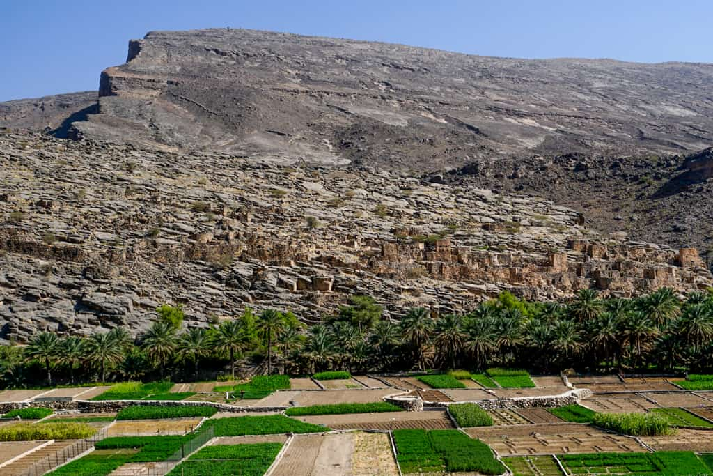 Oman photos – the adobe houses of Al Hamra sitting at the foot of the Hajar Mountains.