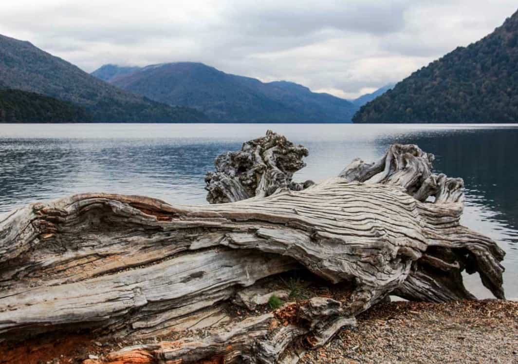 Route Of The Seven Lakes: The Ultimate One-Day Patagonia Road Trip